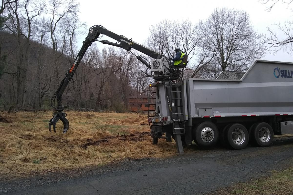 Removal of fallen trees and debris